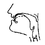 Артикуляционный уклад звука «Ц» в картинках