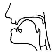 Артикуляционный уклад звука «И» в картинках