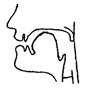 Артикуляционный уклад звука «Й» в картинках