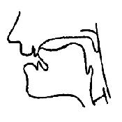 Артикуляционный уклад звука «Л» в картинках