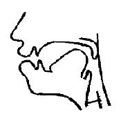 Артикуляционный уклад звука «У» в картинках
